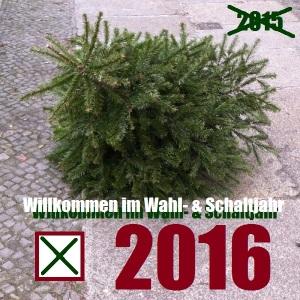 Weihnachtsbaum2016-Foto BMoeller