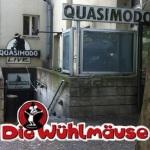 Quasimodo-Wühlmäuse